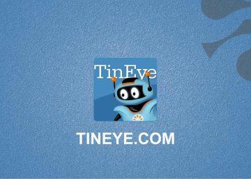 tineye-Brainspaces